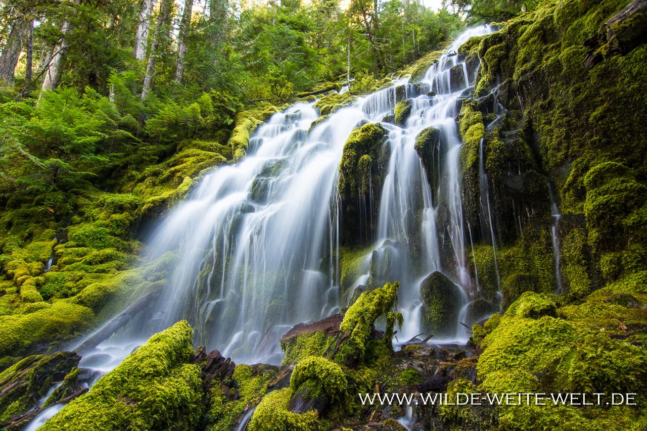 Upper Proxy Falls - Three Sisters Wilderness, Willamette National Forest, Oregon