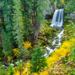 Warm Springs Falls - Umpqua National Forest, Oregon