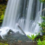 Warm-Springs-Falls-Umpqua-National-Forest-Oregon-3 Warm Springs Falls [Lemolo Lake]