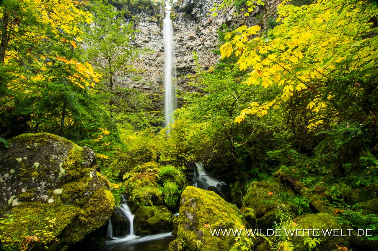 Watson Falls - Umpqua National Forest, Oregon