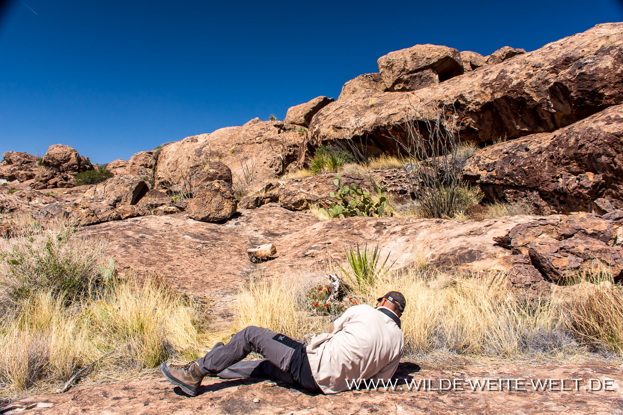 Pine-Canyon-Trail-Organ-Mountains-National-Monument-New-Mexico-14 Nr. 11: How is it going [bis 11. April 2018]