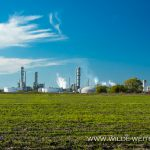 Mississippi-Wallace-River-Road-Louisiana-2 Plantations & Plants [Louisiana]