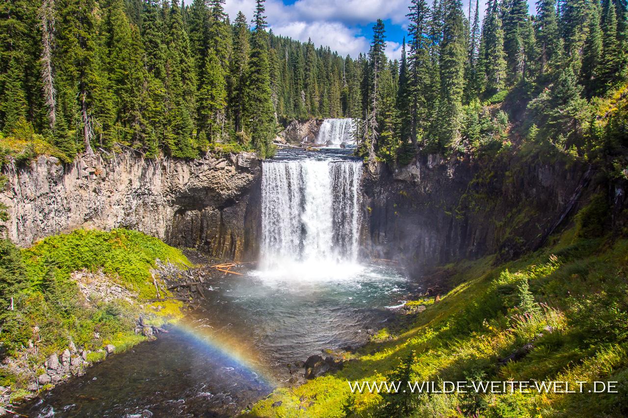 bernachtungsplatz-Gros-Ventre-River-Road-Bridger-Teton-National-Forest-Wyoming-14 Nr. 19: How is it going [bis 25. August 2018]