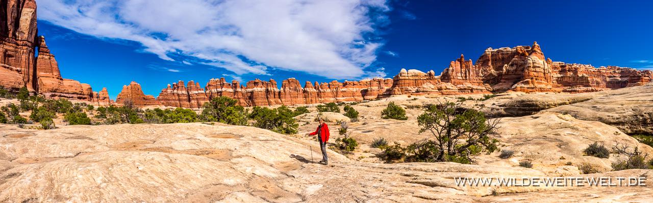 Druid-Arch-and-Elephant-Canyon-Elephant-Canyon-Canyonlands-National-Park-Needles-District-Utah-4 Druid Arch & Chesler Park - Canyonlands National Park / Needles District [Utah]