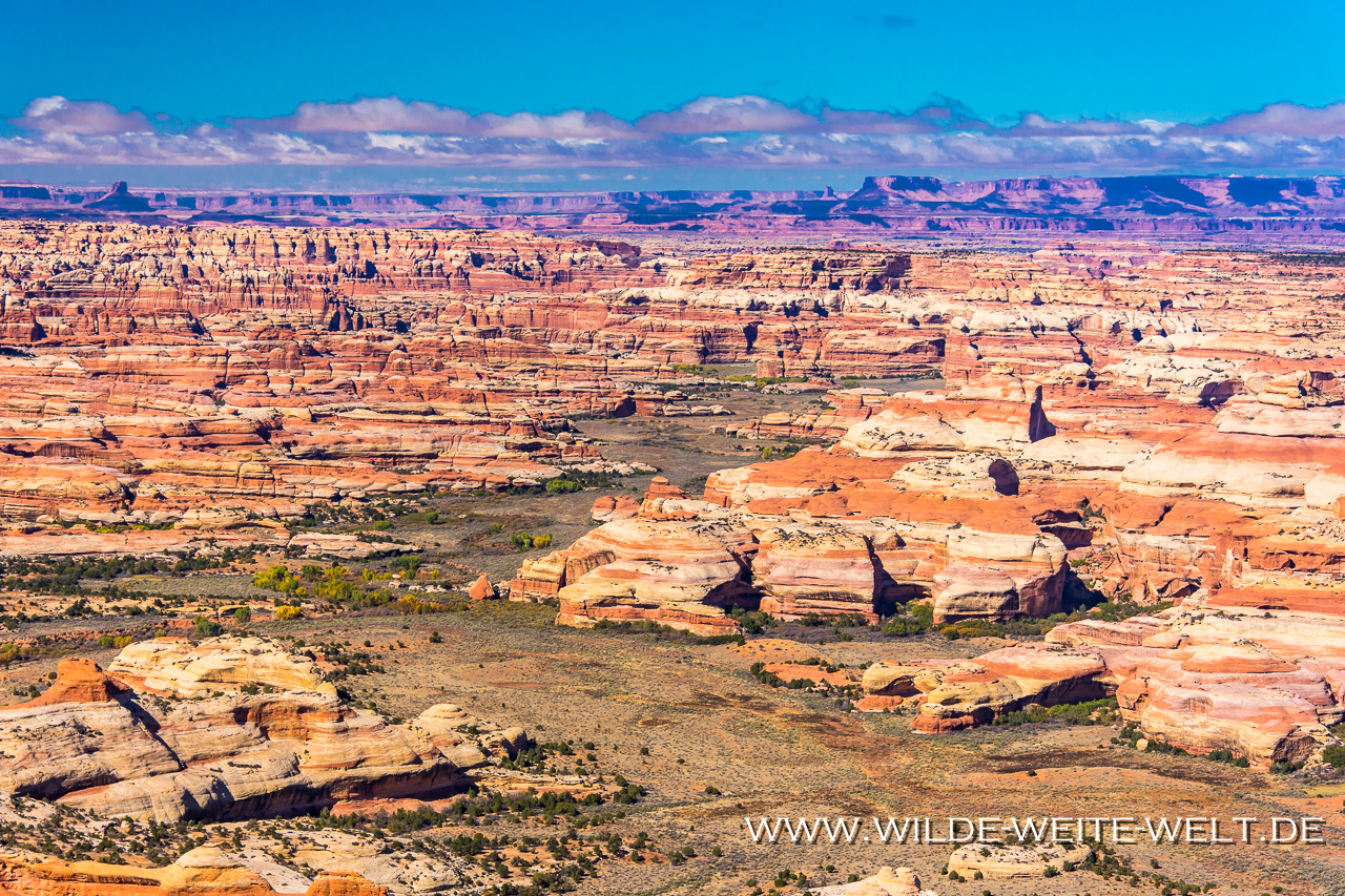 Monument-Valley-and-San-Juan-River-from-Muley-Point-Muley-Point-Glen-Canyon-National-Recreation-Area-Utah-8 Nr. 24: How is it going
