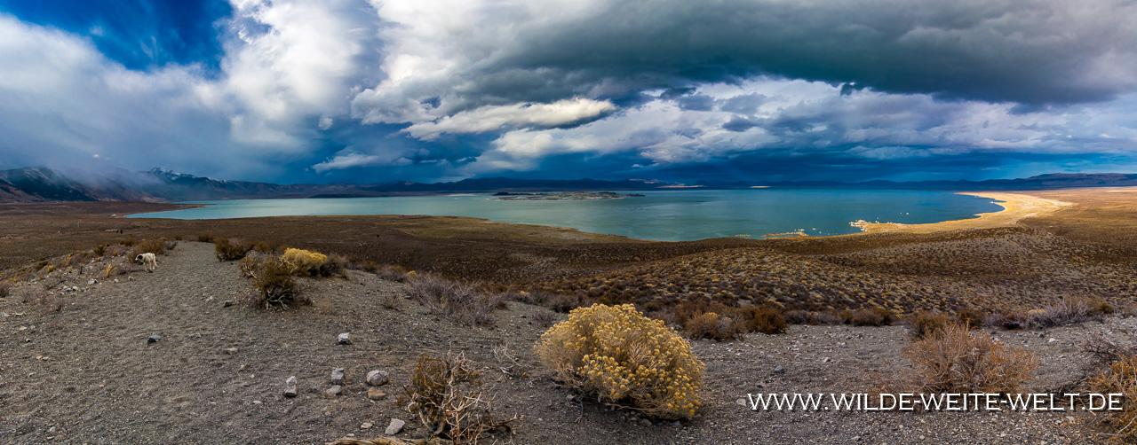 South-Tufa-Mono-Lake-California-114 Mono Lake: South Tufa, Sand Tufa & Panum Crater [California]