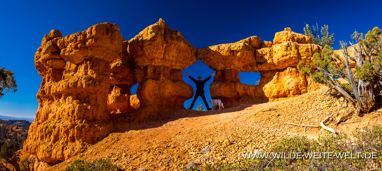 The-Windows-Arches-Trail-Red-Canyon-Dixie-National-Forest-Utah-4 Arches Trail im Loose Canyon [Utah]