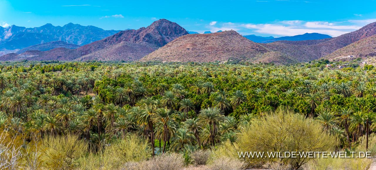 campingcar_1 Baja California Reiseroute und Erfahrungsbericht Januar bis März 2019 [Mexico]