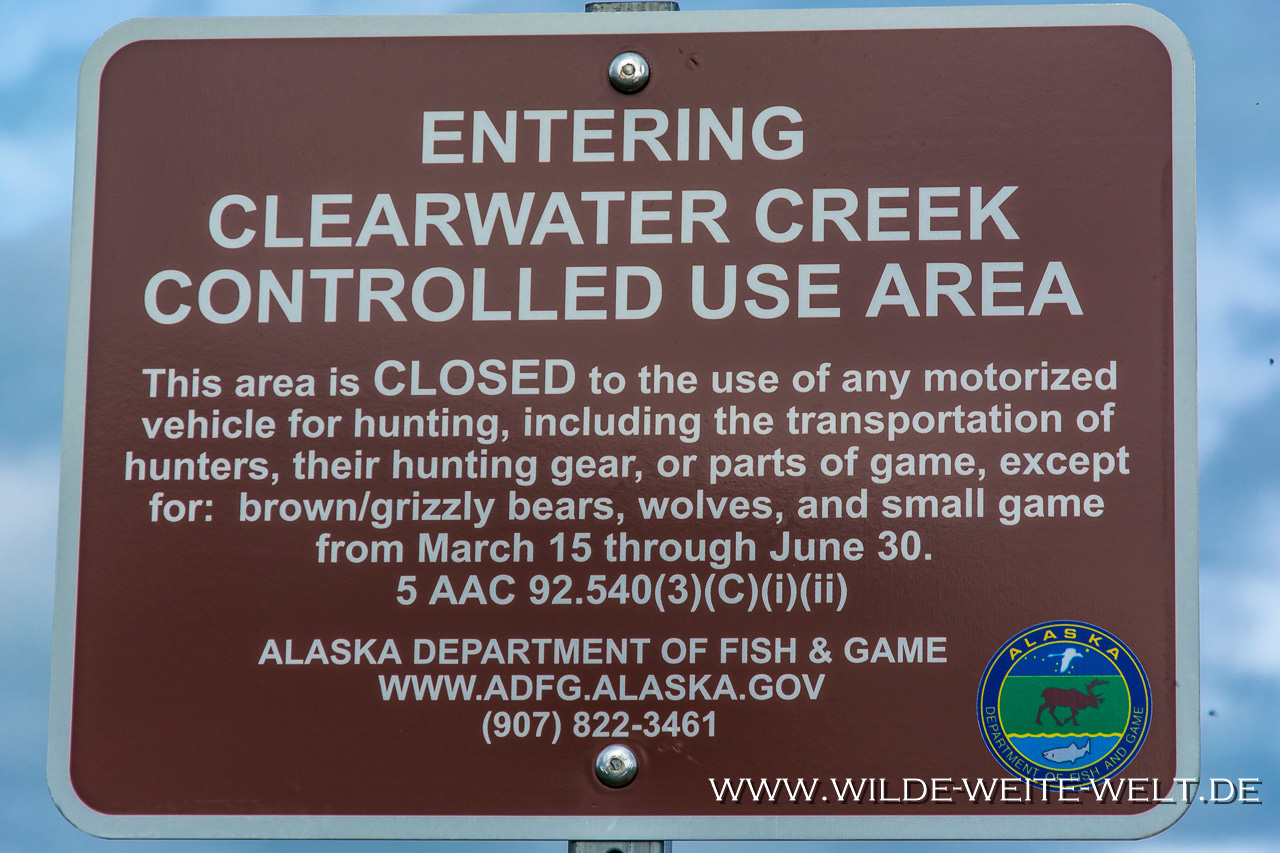 Ausgeweideter-Biber-Denali-Highway-Alaska Alaska: Erfahrungsbericht & Zusammenfassung [Alaska]