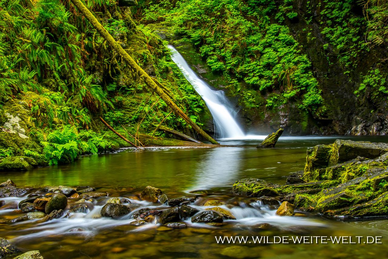 Goldstream-Falls-Golstream-Provincial-Park-Vancouver-Island-British-Columbia-6 Vancouver Islands Wasserfälle - eine Auswahl: Goldstream & Niagara & Sandcut Beach & Sombrio Beach & Englishman & Little Qualicum & Elk & Lupin & Karst Creek & Lower Myra & Upper Myra & Lady Falls