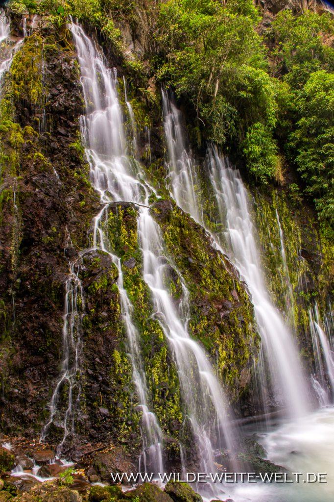 Fuente-Huriata-Parque-Nacional-Barranca-de-Cupatitzio-Uruapan-Michoacan-2-1024x682 Parque Nacional Barranca de Cupatitzio & Cascada Tzararacua [Uruapan]