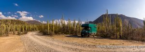 bernachtungsplatz-Jardin-Botanico-Helia-Bravo-Hollis-Reserva-de-la-Biosfera-Tehuacan-Cuicatlan-Zapotitlan-Puebla-3-300x109 Übernachtungsplatz