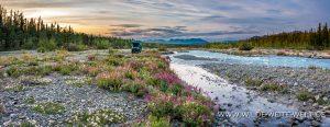 bernachtungsplatz-Quill-Creek-Haines-Highway-Yukon-8-300x116 Übernachtungsplatz