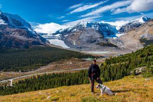 Athabasca-Glacier-and-Dome-Glacier-Wilcox-Ridge-Trail-Jasper-National-Park-Alberta-300x200 Athabasca Glacier and Dome Glacier