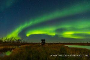 Aurora-Borealis-Caen-Lake-Yellowknife-Highway-Northwest-Territories-22-300x200 Aurora Borealis