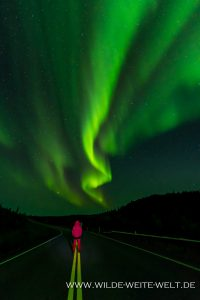 Aurora-Borealis-Cameron-River-Crossing-Ingraham-Trail-Yellowknife-Northwest-Territories-4-200x300 Aurora Borealis