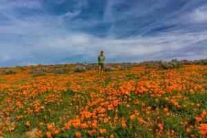 California-Poppies-mit-Tanja-Antelope-Valley-California-Poppy-Reserve-California-300x200 California Poppies mit Tanja