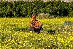 Desert-Dandelion-mit-Tanja-Di-Giorgio-Road-Anza-Borrego-State-Park-California-2-300x200 Desert Dandelion mit Tanja