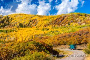 Fall-Color-Big-Cimarron-Road-Colorado-300x200 Fall Color