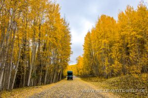 Fall-Color-Silver-Jack-Reservoir-Uncompahgre-National-Forest-Colorado-300x200 Fall Color