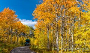Fall-Color-at-Barrier-Lake-Kananaskis-Highway-Kananaskis-Country-Alberta-2-300x179 Fall Color at Barrier Lake