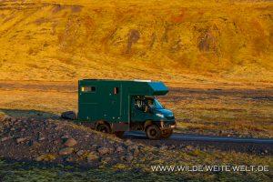 Herbstliche-Tundra-Solheimajökull-Skogar-1-Island-300x200 Herbstliche Tundra