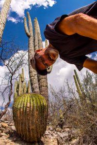 Jardin-Botanico-Helia-Bravo-Hollis-Reserva-de-la-Biosfera-Tehuacan-Cuicatlan-Zapotitlan-Puebla-1-200x300 Jardin Botanico Helia Bravo Hollis