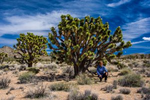 Joshua-Tree-mit-Tanja-Cedar-Canyon-Road-Mojave-National-Preserve-California-300x200 Joshua Tree mit Tanja