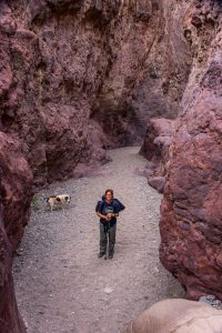 Ringbolt-Canyon-Lake-Mead-National-Recreation-Area-Arizona-200x300 Ringbolt Canyon