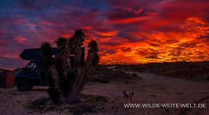 Sunset-Bahia-Magdalena-Baja-California-Nord-300x166 Sunset