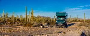 Uebernachtungsplatz-Cabeza-Prieta-National-WIldlife-Refuge-Arizona-300x120 Übernachtungsplatz