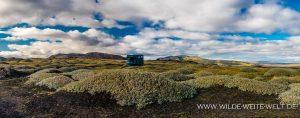 Weiden-im-schwarzen-Lavasand-Landmannaleid-F225-Island-2-300x118 Weiden im schwarzen Lavasand