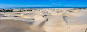 Alexandria-Dunes-Pearson-Park-Nature-Reserve-Colchester-Suedafrika-14-300x111 Alexandria Dunes