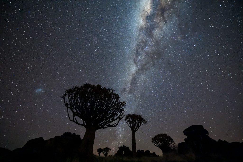Koecherbaeume-mit-Milchstrasse-Mesosaurus-Fossil-Bushcamp-C17-Keetmannshoop-Karas-Namibia-49-1024x683 Nightsky & Milkyway in Namibia